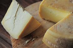 «Щелково Агрохим» займется производством твердых сыров