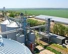 Элеваторы в Поволжье отказываются принимать зерно