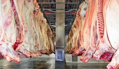Картина мясом