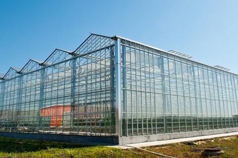«Технологии тепличного роста» построили четвертый комплекс
