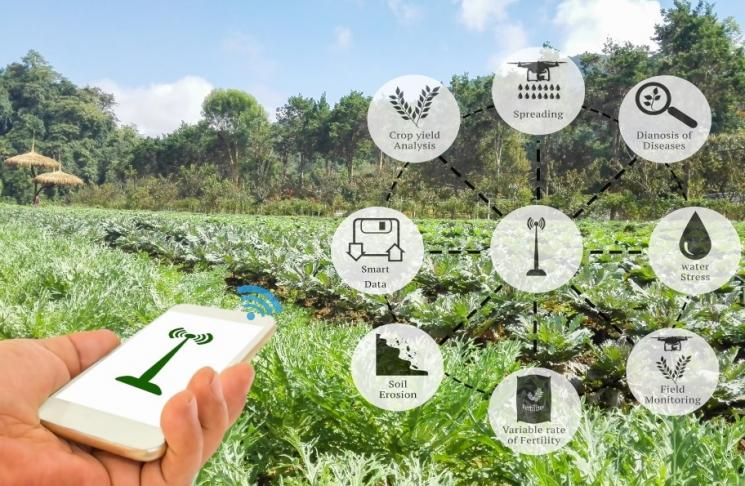АПК будущего. Взгляд на сельское хозяйство сквозь призму анализа больших данных