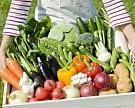 Урожай овощей в этом году останется на прошлогоднем уровне