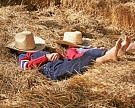 Агротуризм: источник дохода фермеров или способ возрождения села