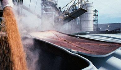 Прогноз экспорта зерна вэтом сельхозгоду— 10?12 млн т