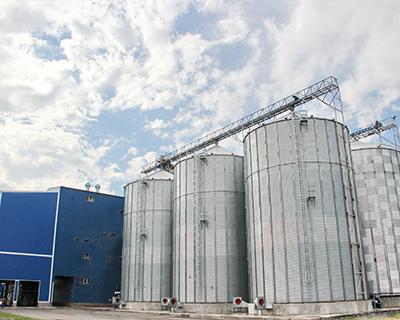Feed Industry— 2020. Вертикальная модель