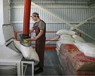 Потенциал экспорта сахара— 350 тысяч тонн
