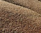 Цены на пшеницу опустились до минимума с осени 2014 года