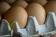 Яйца лидируют по росту цен в октябре