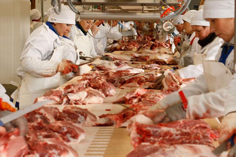 Топ-20 производителей свинины