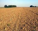 Земельный банк «Агрокомплекса» загод вырос на40%