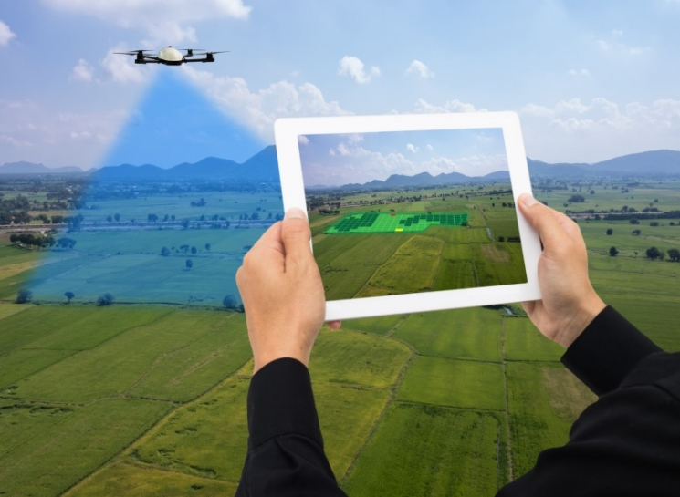 Цифровой передел. Преимущества и риски цифровизации сельского хозяйства