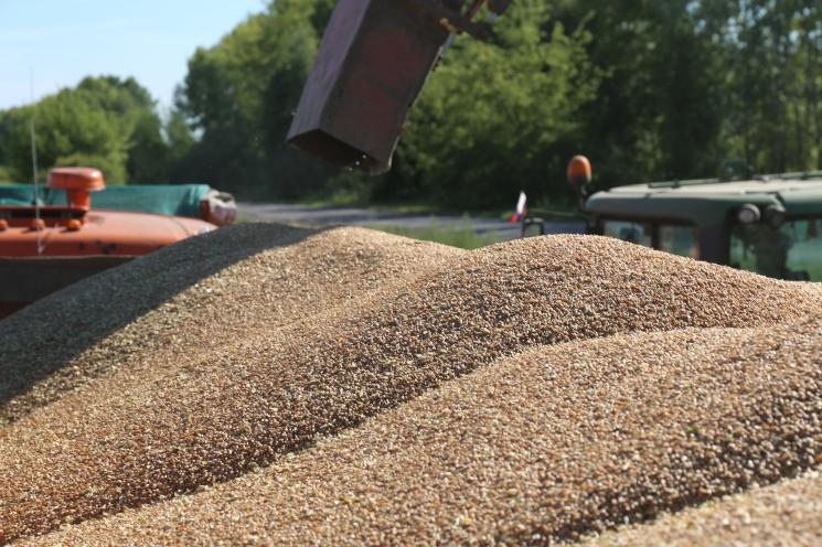 Цены на зерно на старте сезона будут высокими из-за рекордно низких запасов