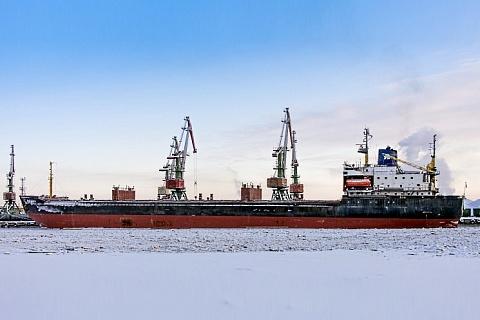 Омская область планирует вывозить зерно по Севморпути