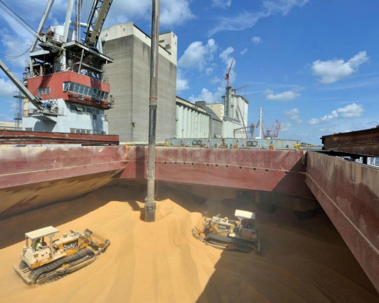 Турция сохраняет второе место среди покупателей российского зерна
