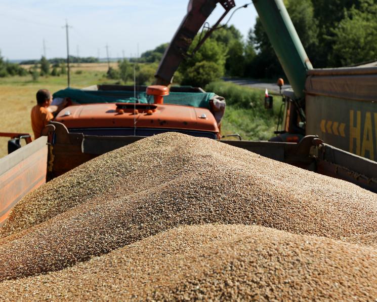 Темпы прироста продовольственного потребления зерна вближайшие 10 лет замедлятся