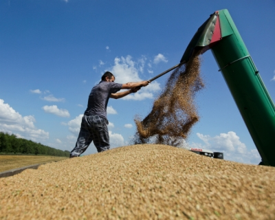 «Риф» в текущем сезоне стал крупнейшим экспортером зерна