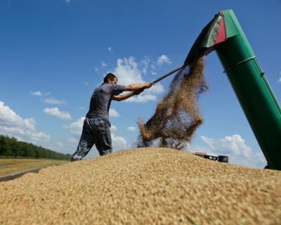 «Риф» втекущем сезоне стал крупнейшим экспортером зерна