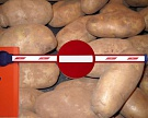 Россия может расширить список запрещенных продуктов из Украины