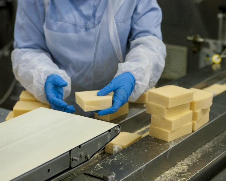 ВПодмосковье появятся семь сыроваренных заводов