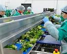 «Белая Дача» вложит в агропроекты 180 млн евро