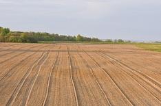 «Мираторг» купил 36 тысяч гектаров земли у чешской PPF Group