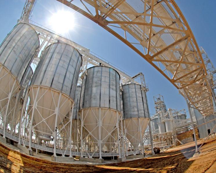 Сохранить зерно. Элеваторные мощности на службе у аграриев