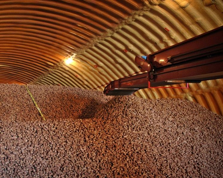 Мощности для хранения овощей увеличились на180 тысяч тонн