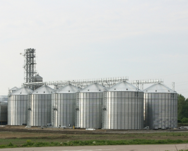 Россия вошла в топ-10 по производству кормов
