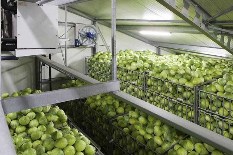 «АФГ Националь» получил субсидии за овощехранилище