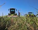 Автономия регионов в субсидировании и развитие сельхозкооперации