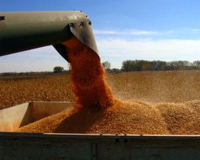 Зерновой баланс сезона