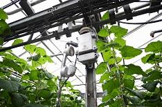 Госдума может установить льготные энерготарифы для аграриев