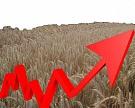 Посевные площади «Черкизово» увеличились на 48%