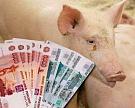 В свиноводство могут инвестировать 180 млрд рублей до 2018 года