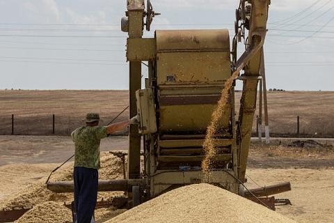 Минсельхоз доработает квоту на экспорт зерна