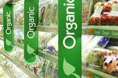 Знак органической продукции появится через год