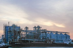 За июль-январь Россия экспортировала 31,8 млн тонн зерна
