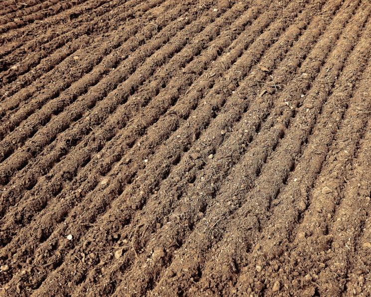 С 2020 года аграриям компенсируют 30% затрат на повышение плодородия