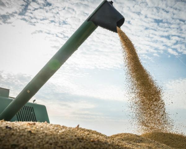 Урожай-2016 стал рекордным