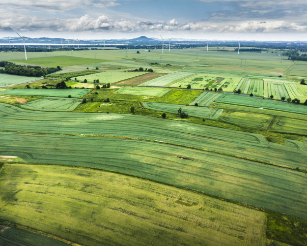 Посевы ГМ-агрокультур достигли рекордных 185 млн гектаров
