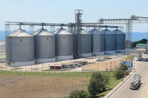 Зерновой рынок-2019: новые тренды и приход ВТБ