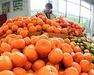 Объемы импорта продовольствия в 2016 году снизятся на $2 млрд
