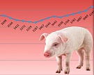 Экспорт мяса из России в 2015 году продолжит расти