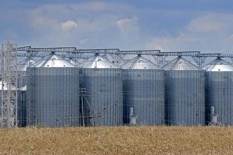 Продажи зерна снизились на 11,5%