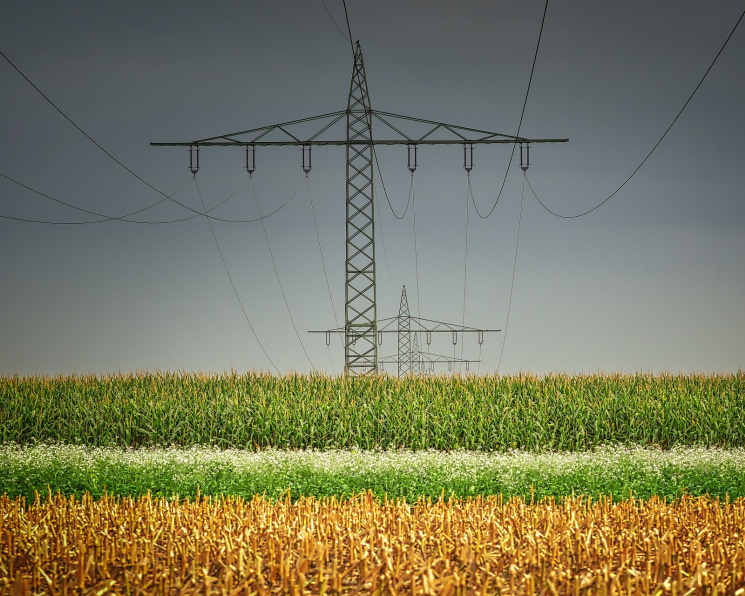 Минсельхоз прорабатывает вопрос о снижении энерготарифов для аграриев