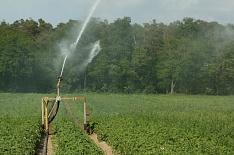 В 2018 году на орошении будет 3,89 млн гектаров сельхозземель