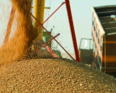 Всезоне-2015/16 экспорт пшеницы может достичь рекордных 23,5 млн тонн