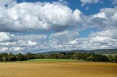 «Мираторг» стал крупнейшим землевладельцем в стране