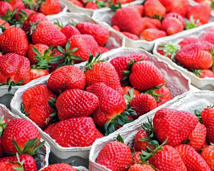 Минсельхоз: урожай ягод достигнет 19 тысяч тонн
