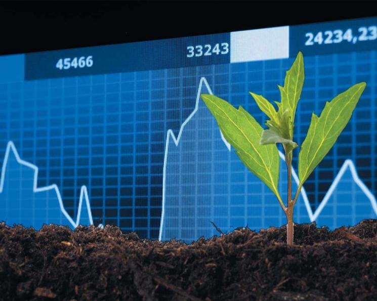 Агросектор снова в плюсе. Отрасль ускорила рост экономики